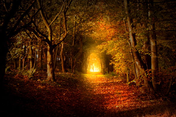 Lead Light Light on The Path Lead